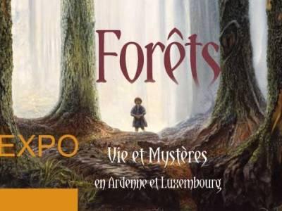 Forêts - Vie et Mystères en Ardenne et Luxembourg